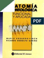Figun - Anatomía Odontologica Funcional y Aplicada
