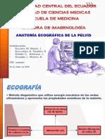 1. Anatomia Ecografica de La Pelvis