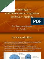 Embriología y Malformaciones Congénitas de Boca y Faringe1