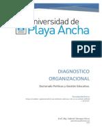 ensayo diagnostico organizacional.docx