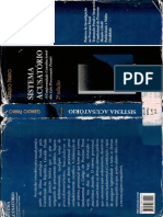 SISTEMA ACUSATORIO - GERALDO PRADO.pdf