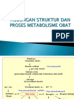 6-Metabolisme