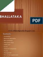Bhallataka (Semicarpus anacardium)