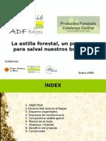 Presentació Biomassa Bages 2009