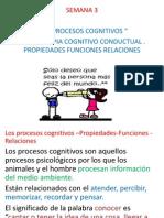 caracteristicas terapia cognitivo