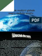 incalzireaglobalaasupramediuluiacvatic-090313075453-phpapp02
