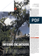 THC55_Plantas solanaceas
