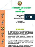 Mozambique Biofuel Policy