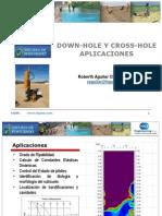 Down Hole y Cross Hole - Aplicaciones