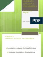1. Lingüística, Ecología y Econlingüística & 9.1. Multilingüismo & 9.2. Multidialectalismo & 9.3. Situaciones Fronterizas