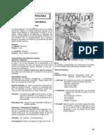 Literatura Compendio General - 6 - Peruana