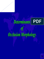 Determinants of Occlusion