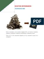 Circuitos Integrados (Web)