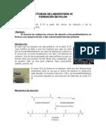 Actividad de Laboratorio 2 Nylon
