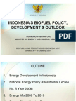 Indonesia - Biofuel Policy, Development and Outlook