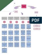 Diagrama Del Programa de Formación Mariela