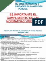 2013 Control Gobernamental Recopilado Por Ing Alejandro