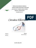 Los Circuitos Eléctricos - Samuel