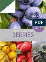 Directorio Berries