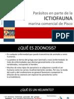 Practica Parasitos en Peces Comerciales Del Perú