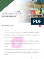 Estudio de Mercado Región de Los Lagos 2011