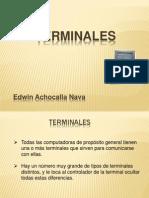 TERMINALES.pptx