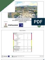 Feasibility study on the CSU stadium project