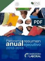 Panorama Ejecutivo 2013