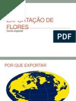 Slide Exportação de Flores