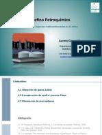bloque_IV (1).pdf
