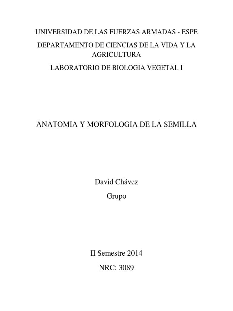 Informe 1 - Semilla y Germinación.docx