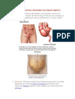 Enfermedades o Trastornos Relacionados Con El Aparato Digestivo