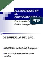 Neuro Desarollo