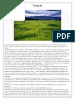 Andrada.pdf