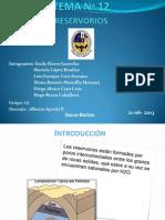 RESERVORIOS GRUPO 12.pptx