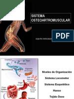 Clase 1 OsteoArtroMuscular