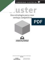 Documento Comunidad Cluster N 1