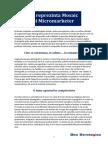 Mosaic - Micromarketer