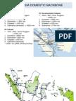 indonesiadomesticfibreoptic-120215065629-phpapp01