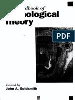 Handbook of Phonology