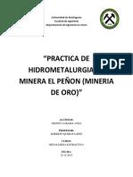 Hidrometalurgia Del Oro, Mineral El Peñon