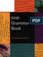 Irish Grammar Book