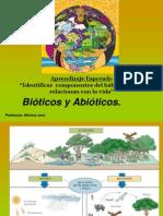 componentesbiticosyabiticos-110702162859-phpapp02