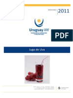 Informe de Jugo de Uva Uruguay XXI Set 2011