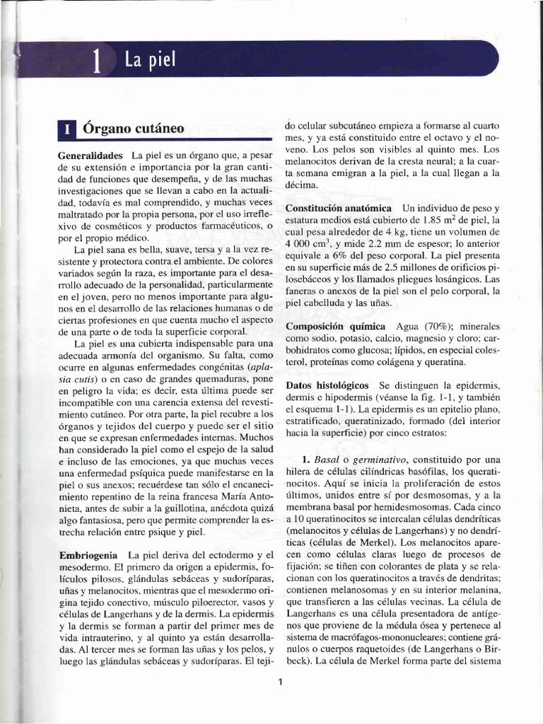 01] La Piel