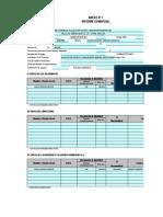 Informe Comercial - Bf Rellenado