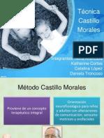 Castillo Morales Ppt2.0(1)