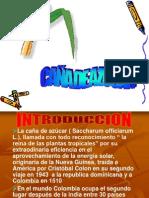caa-de-azucar2-1224605156990343-9