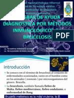 inmunologia BRUCELOSIS