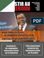 Investir Au Cameroun 25